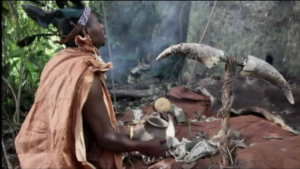 Powerful Traditional Healer in Africa